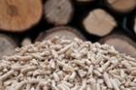 Prix des pellets de bois, leur meilleure période d'achat et leur conservation : découvrez nos astuces